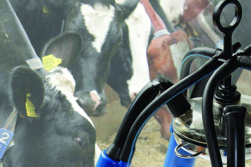 SAC Milking Equipment