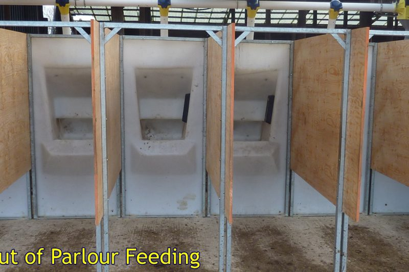 Out Of Parlour Feeders