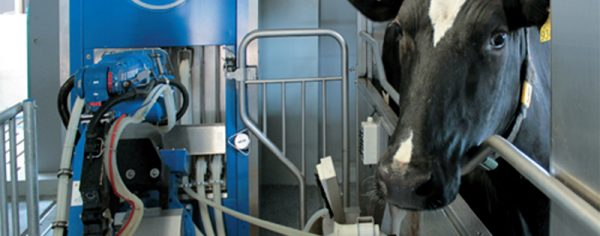 SAC Robotic Milking System